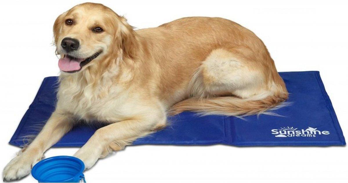 Large Dog Cool Mat £9.99 @ Amazon